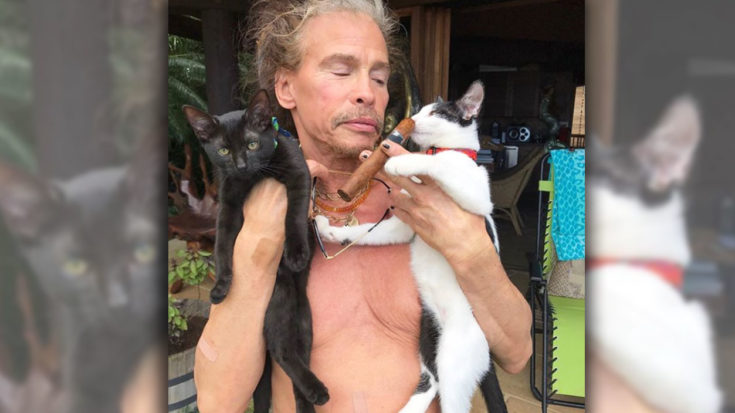 Steven Tyler's Rockstar Getaway Raises More Questions Than Answers | I Love Classic Rock Videos