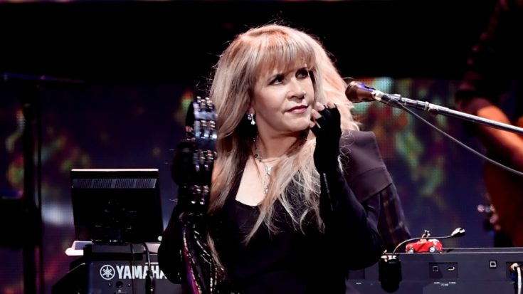 Fans Have Created A Silly Campaign For Steve Nicks And It Already Has Thousands Of Supporters | I Love Classic Rock Videos