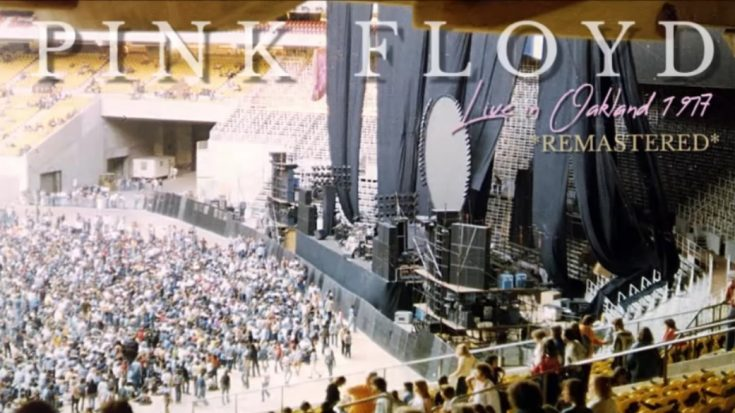 Listen To Pink Floyd Play 'Animals' and 'Wish You Were Here' Back In 1977 | I Love Classic Rock Videos